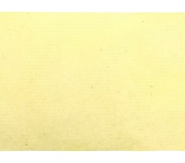 BP575L